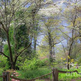 Veronica Batterson - Spring Memphis Botanic Garden