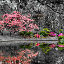 Spring Reflections at the Garden 7R2_DSC6595_04172017 by Greg Kluempers