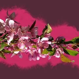 Nancy Pauling - Spring Ribbon