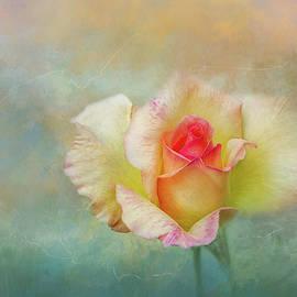 Terry Davis - Spring Rose Impression
