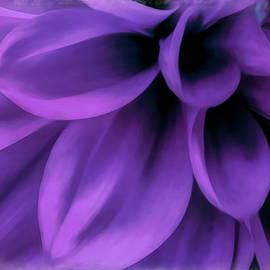 Spring Series - 8 by Arlane Crump