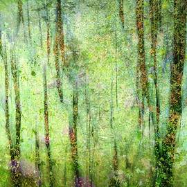 Shirley Sirois - Spring In the Woods