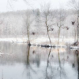 Spring Snow by Bill Wakeley