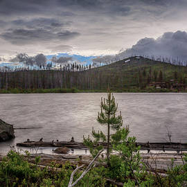 Spring Storm at Round Lake - Cat Connor
