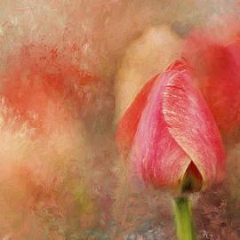 Darren Fisher - Spring Tulip ImpressionII