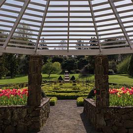 Spring Tulips Garden Gazebo by Terry DeLuco