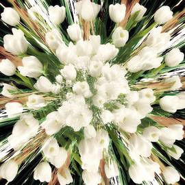 Jenn Teel - Spring Tulips
