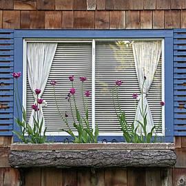 Inge Riis McDonald - Spring Window