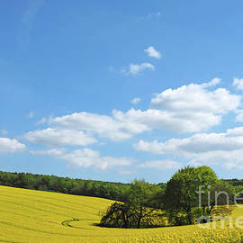 Alex Cassels - Springtime in the Meon Valley