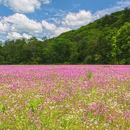 Angelo Marcialis - Springtime Rejoicing
