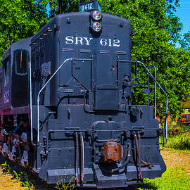 SRY 612 Dessel Train - Garry Gay