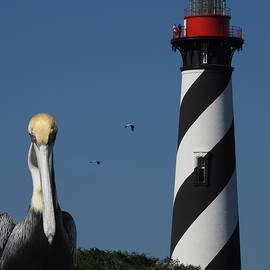 Rod Seel - St. Augustine Lighthouse