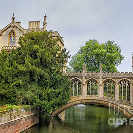 St Johns college and the Bridge of sighs in Cambridge university by Patricia Hofmeester