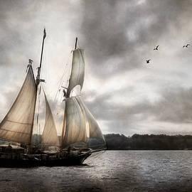 St. Lawrence II by Lori Deiter