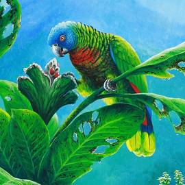 St. Lucia Parrot and bwa pain marron by Christopher Cox
