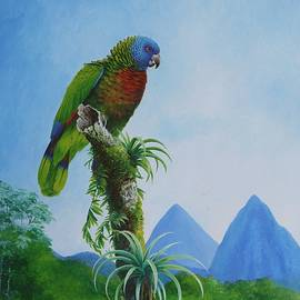 St. Lucia Parrot and Pitons by Christopher Cox