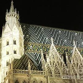St. Stephan's Cathedral, Vienna  At Night by Courtney Dagan For Poet's Eye