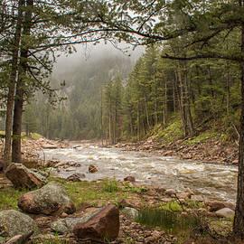 St Vrain Creek by Lois Lake
