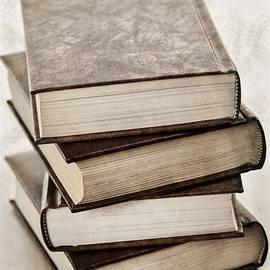 Elena Elisseeva - Stack of books