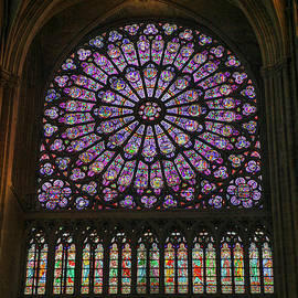 Stained glass window of the Notre Dame by Patricia Hofmeester
