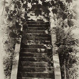 Stairway to Heaven by Bill Cannon