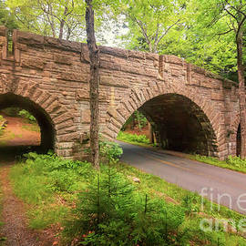 Elizabeth Dow - Stanley Brook Bridge