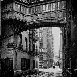 Staple Street NYC by Chris Lord