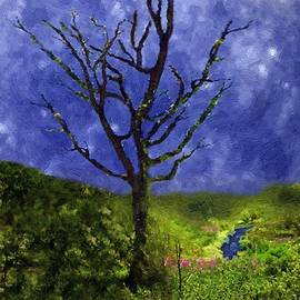 RC deWinter - Star-Spangled Tree