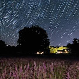 Kristen Wilkinson - Star Trails at the Lavender Farm
