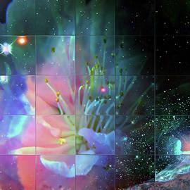 Star Travel, Day 26 by Igor Malinovskii