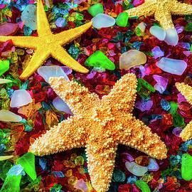 Starfish On Sea Glass - Garry Gay