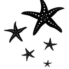 Beli - Starfishes