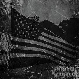 Luther Fine Art - Stars And Stripes Forever