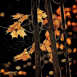 Wes Iversen - Stars of Autumn