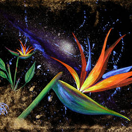 Starstuff 1 by Mandy Elliott
