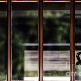 Brad Allen Fine Art - Station Window
