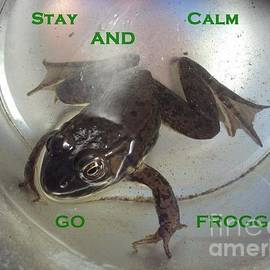 Stay Calm and Go Frogging by Abelone Petersen
