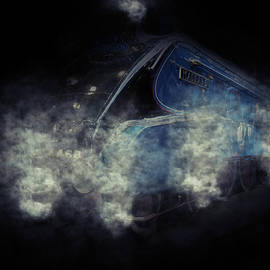 Phil Pace - Steaming Mallard
