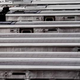 Marianne Campolongo - Steel Sleepers I