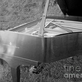 Charlene Cox - Steinway Grand Piano in grass Black and white