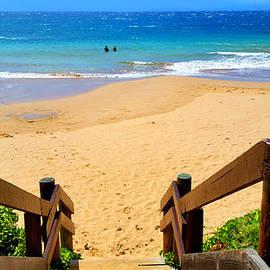 Michael Rucker - Steps to Hawaiian Paradise