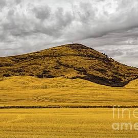 Steptoe Butte by Jon Burch Photography