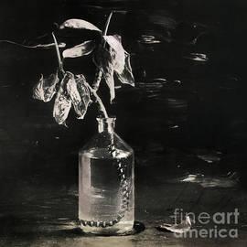 Still life #141456 by Andrey Godyaykin