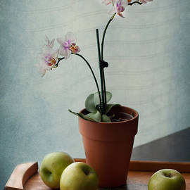 Maggie Terlecki - Still Life with Orchids and Green Apples