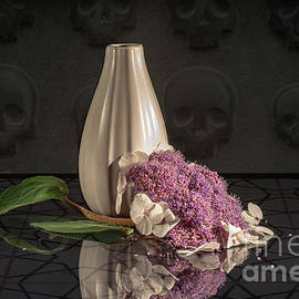 Stilllife With Hydrangea by Karin Stein