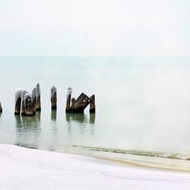 Kathi Mirto - Stillness in the Mist
