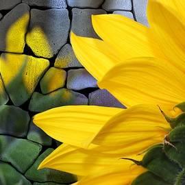 Barbara Chichester - Stoned Sunflower