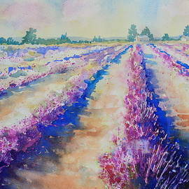 Stonewall Lavender III by Marsha Reeves
