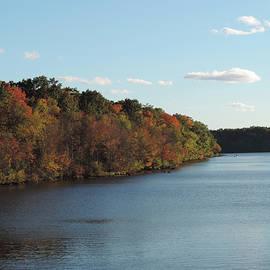 Ron Stiltner - Stoney Creek in Autumn