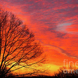 Stonington Sunrise by Joe Geraci